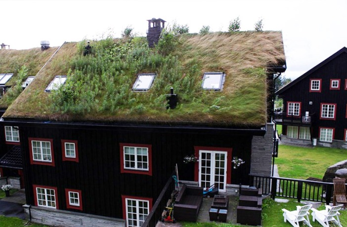 NorweigenGreenRoofs2